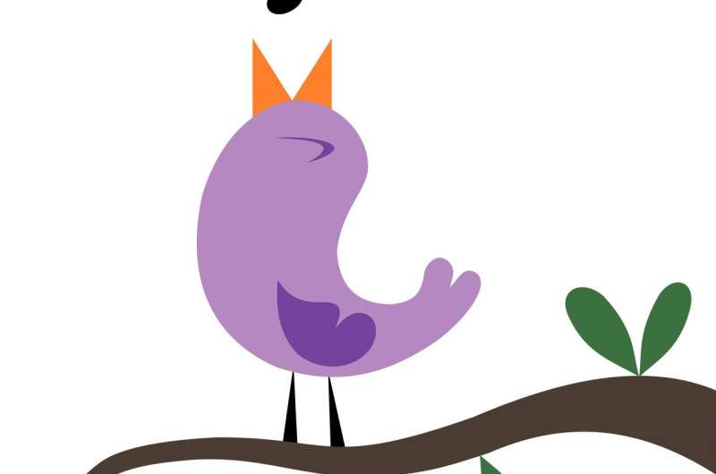 Tweet and re-tweet: Songbird stuttering allows researchers to pinpoint causes in the brain